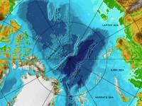 арктическа зона