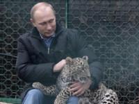 Путин влязъл в клетка с леопард