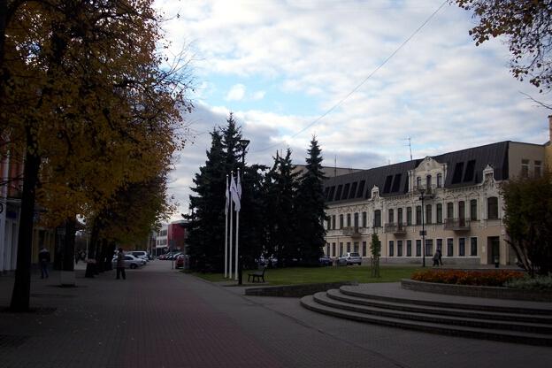 В Литва настъпва ден на размисъл преди президентските избори