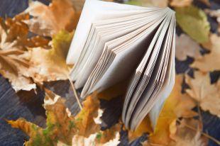 «Очей очарованье». Есента в стиховете на руските поети