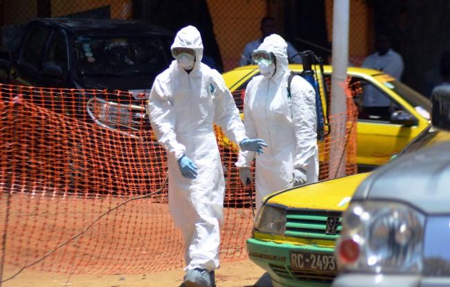 Русия има запас от препарати за бързо диагностициране на Ебола