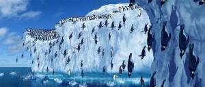 Antarktida_05
