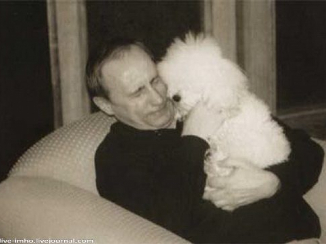 С любимото куче