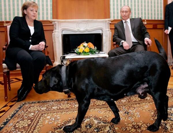 Путин, Кони и германският канцлер Ангела Меркел