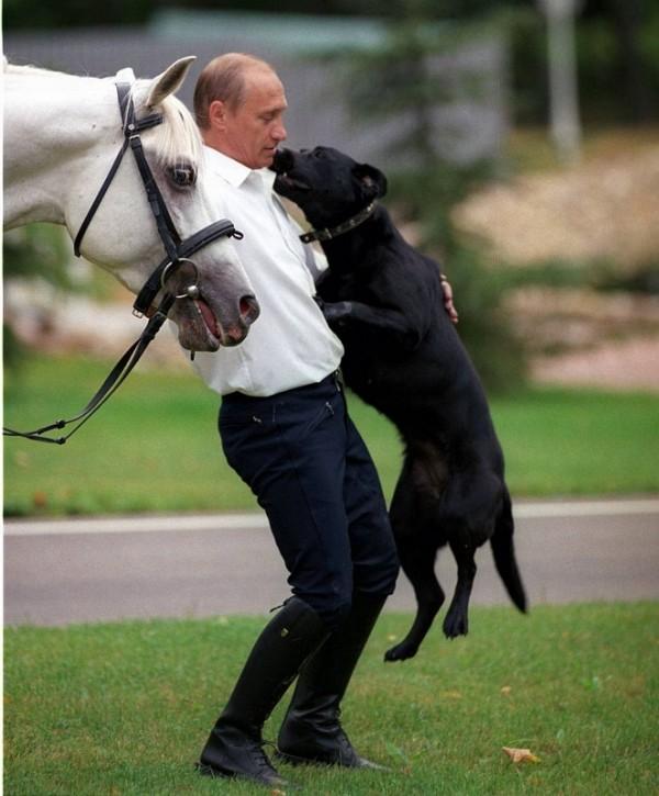 Кони и Путин