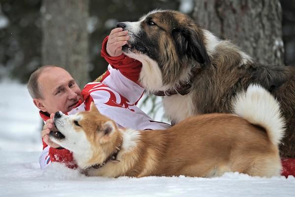 Путин и Юме, Бъфи