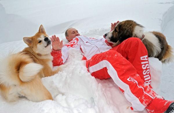 Путин с кучетата