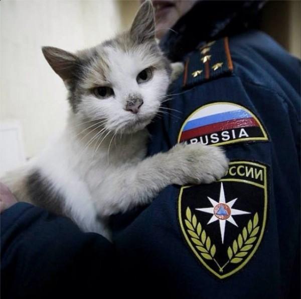 Руското Министерство на извънредните ситуации в Инстаграм: Помощ в действие