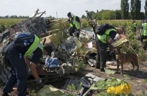 Вижте първите мигове след свалянето на MH17  (ВИДЕО)