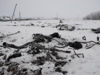 СК на РФ реши да провери чрез детектора на лъжата украинския пилот Волошин