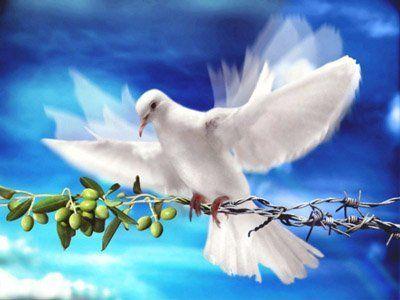 Послание за мир