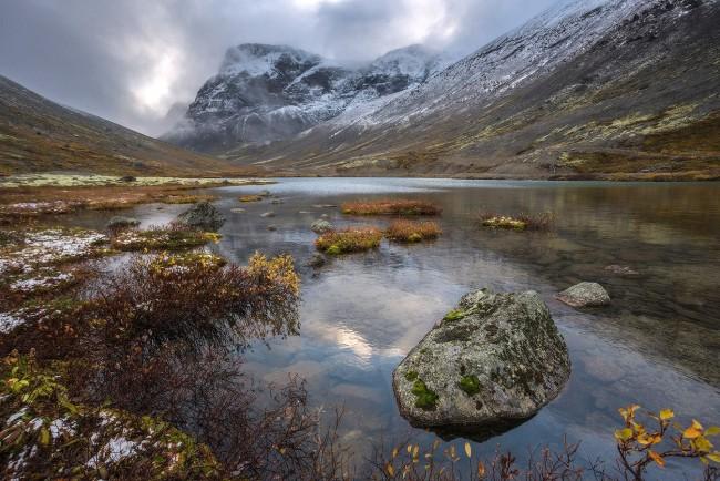 Учените се заемат с екологията на Колския полуостров