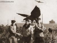 Съветски и български офицери-летци на фона на излитащ самолет, Божурище, 1945 г.