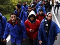"""Словения излъчи нощни кадри от """"неконтролираното нашествие"""" на хиляди мигранти от Хърватия"""