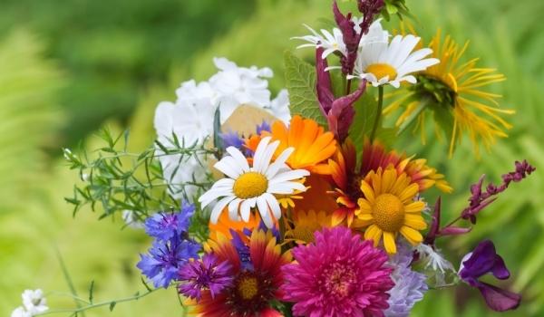 Цветница е! Днес празнуват всички, носещи името на цветя