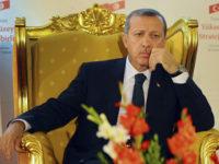 """Ердоган обясни защо Обама и Путин го """"разочароват"""""""