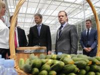 """Медведев: Русия няма """"да хукне и да отвори всички врати"""" за Турция"""