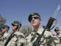 НАТО: Полша трябва да има право да осъществява кибератаки срещу Русия