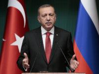 Ердоган: Ще обсъдя икономическото сътрудничество с Путин