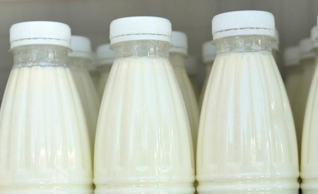 Заради санкциите срещу Русия естонски фермери подариха на местните депутати 10 000 бутилки мляко