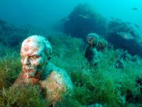 Кой живее под морето? Най-странния музей, който сте виждали