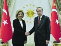 Ердоган обеща да защитава гагаузите от Кишинев