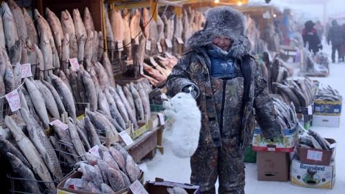 Замразената арктическа риба - основна храна за населението и най-търсен продукт на централния пазар