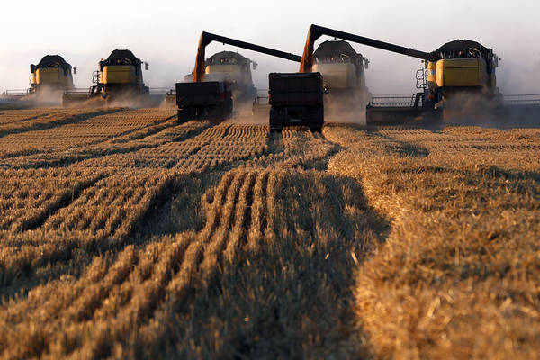 Русия световен шампион по износ на пшеница