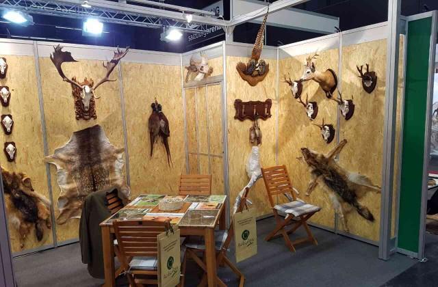 Очакваме ловни туристи от Русия