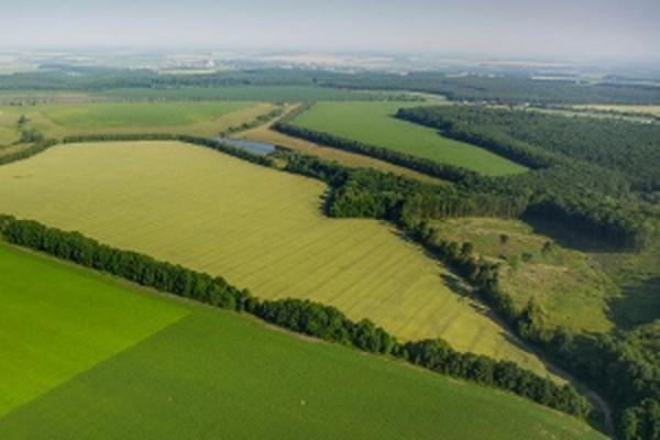 Всеки руснак може да получи безплатно земя в Далечния Изток