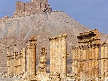 """Кремъл обяви: Палмира е свободна от """"Ислямска държава"""""""