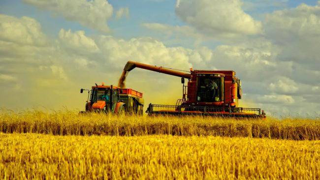 Френски вестник: Санкциите на Запада наредиха Русия сред водещите селскостопански държави