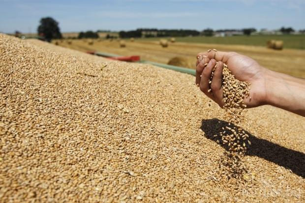 Forbes 2017: Рекорден брой руски богаташи, занимаващи се със селско стопанство