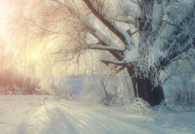 НЕОБИЧАЙНО ЯВЛЕНИЕ: Обилен снеговалеж в част от Русия (ВИДЕО)