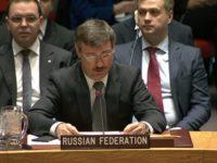 Представителят на Русия в ООН: ЕС не трябва да се заиграва с неонацизма!