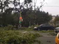11 жертви на мощен ураган в Москва (видео)