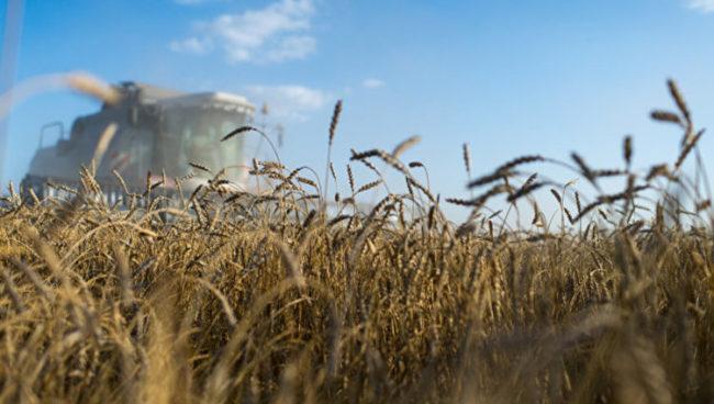 Русия печели повече от жито, отколкото от оръжия