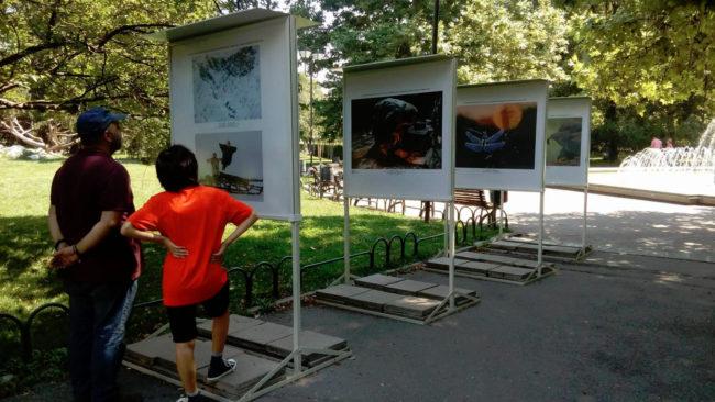 Изложба със снимки, посветени на дивата природа на Русия, може да бъде видяна в София