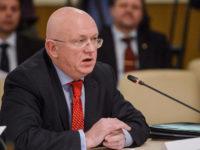 Постоянният представител на Русия за ООН Василий Небензя
