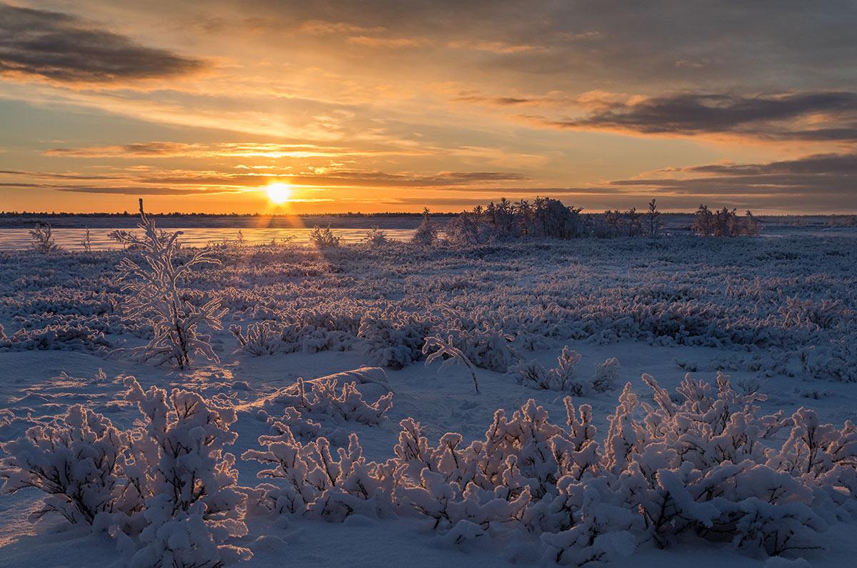 Сребърният пръстен на Русия. Ненецки автономен окръг – Арктика
