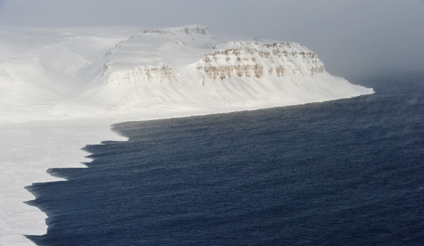 Експерти: Ученията в Арктика са символични