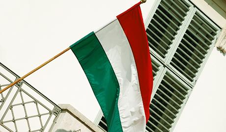 Унгарските националисти подкрепиха референдума в Крим