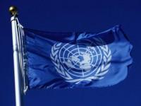 От ООН призовават да се вярва само официалните оценки на организацията относно мирния план на Порошенко