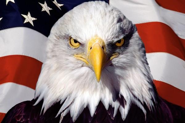 Скандално! Посолството на САЩ в София пусна платена реклама, че опълченците са свалили самолета в Украйна