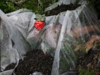 Майка на жертва от сваления MH17 съди Украйна за 800 000 евро