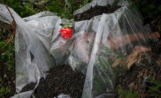 Намерени са телата на 251 загинали в Boeing 777