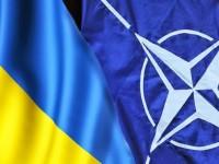 Русия: НАТО не се интересува от хуманитарната катастрофа в Източна Украйна