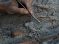 Квартал на 8000 години в София