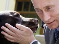 Какво не знаем за Путин?