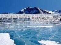 Туристическа структура ще популяризира Антарктида в Русия
